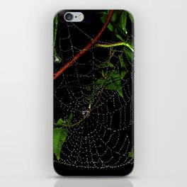 Dewy Curved Leaf Web iPhone Skin