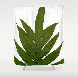 Tropical Fern Botanical Shower Curtain