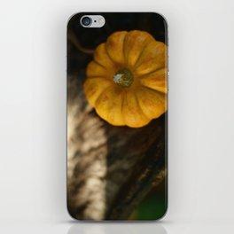 Munchkin iPhone Skin