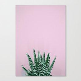 #225 Canvas Print