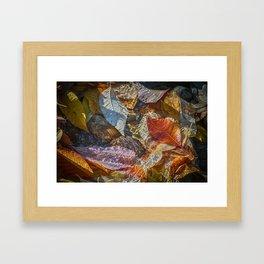 Autumn Leaves in Water Framed Art Print