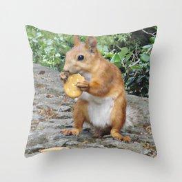 Cracker Throw Pillow