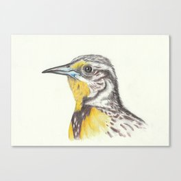 bird II Canvas Print
