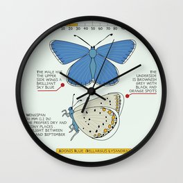 Adonis Blue (Bellargus Lysandra) Wall Clock