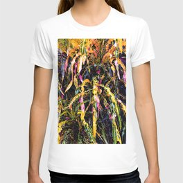 SanFrancisco/ Croton T-shirt