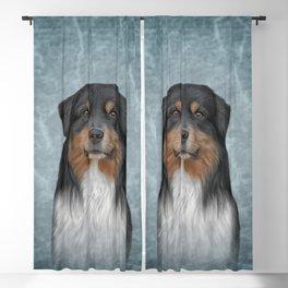 Australian Shepherd dog. Drawing, illustration funny dog Blackout Curtain