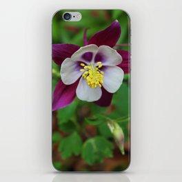 Saffron Stamens II iPhone Skin