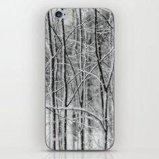 Winter gris iPhone & iPod Skin