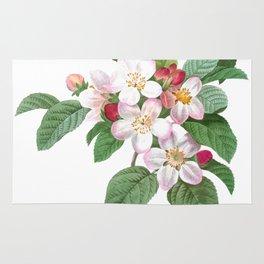 HIGHEST QUALITY botanical poster of Apple tree Rug