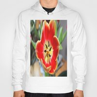 tulips Hoodies featuring tulips by  Agostino Lo Coco