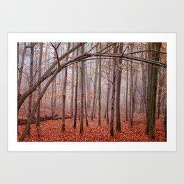 Red twilight Art Print