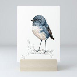 Toutouwai, New Zealand Robin bird Mini Art Print