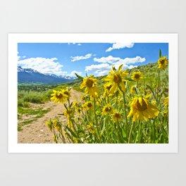 Vibrant trail Art Print