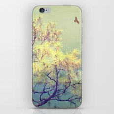 Every Day is a Journey iPhone & iPod Skin