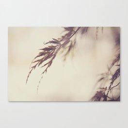 Fall Japanese Maple Canvas Print