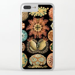 Sea Life Illustrations by Ernst Haeckel, 1904 Clear iPhone Case