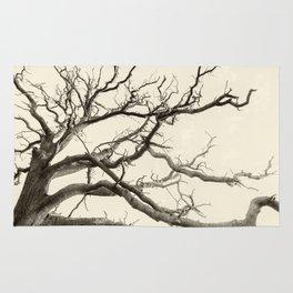Tree Fingers of Perpetual Motion Rug