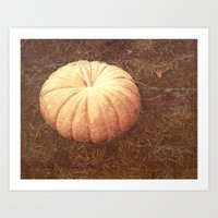 pumpkin Art Prints featuring Pumpkin by Yellowstone Photo Studio