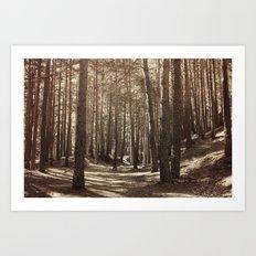 it's autumn Art Print