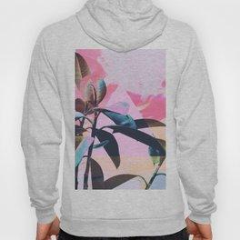 Painted Botanics Hoody