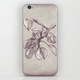 Pear tree iPhone Skin