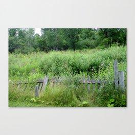 Fence Overgrown Canvas Print
