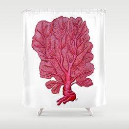 Venus red sea fan coral Shower Curtain
