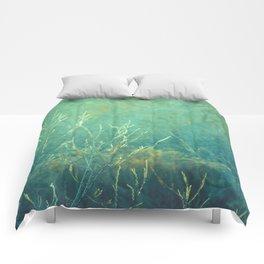 Obscure III Comforters