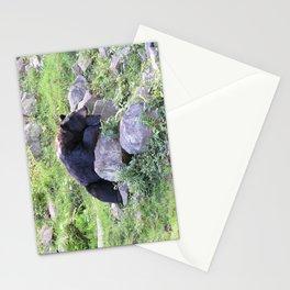 Contemplative Black Bear Stationery Cards