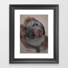 Orangutan! Framed Art Print