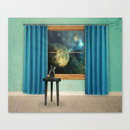 A cat looking outside Canvas Print