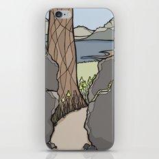 Trail Tree iPhone & iPod Skin