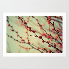 When spring was autumn... Art Print