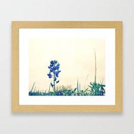 071 | austin Framed Art Print