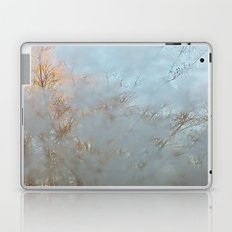 Frost Touch Laptop & iPad Skin