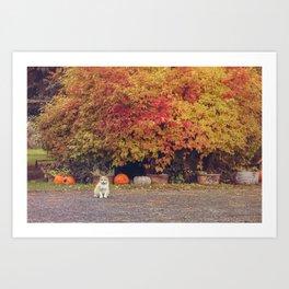 Autumn Cat Art Print