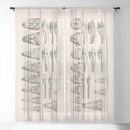Crocodiles Sheer Curtain