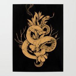 Sage Cleansing Rituals Poster