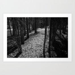 The Woods I Art Print