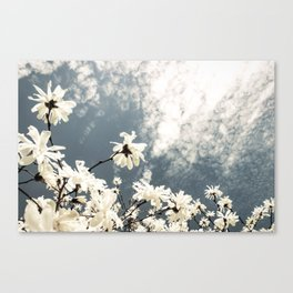 Flowers & Clouds Canvas Print