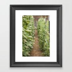 grandpa's garden Framed Art Print
