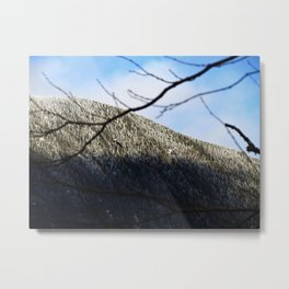 Mountain through the trees Metal Print