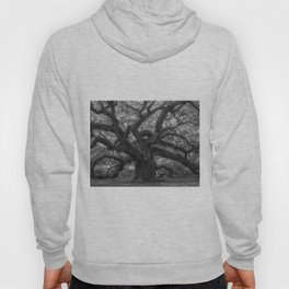 1,500 Year Old Angel Oak Tree of Charleston, South Carolina black and white photography / photograph Hoody