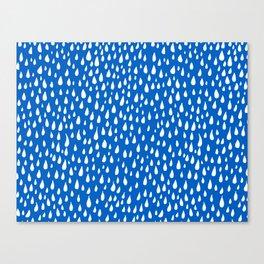 River Flows Canvas Print