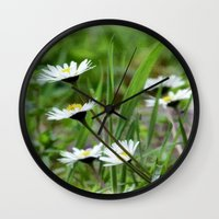 daisies Wall Clocks featuring Daisies by Lynn Bolt