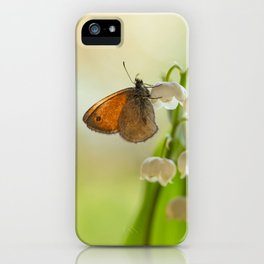 In the morning sun iPhone Case