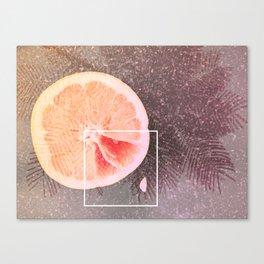 Grapefruit Dreams Canvas Print