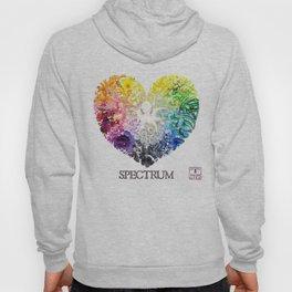 Spectrum Rainbow Heart Hoody