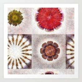 Tugger K-Naked Flower  ID:16165-025113-38800 Art Print