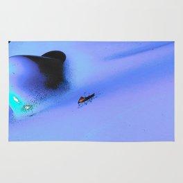 Bug on the blue Rug